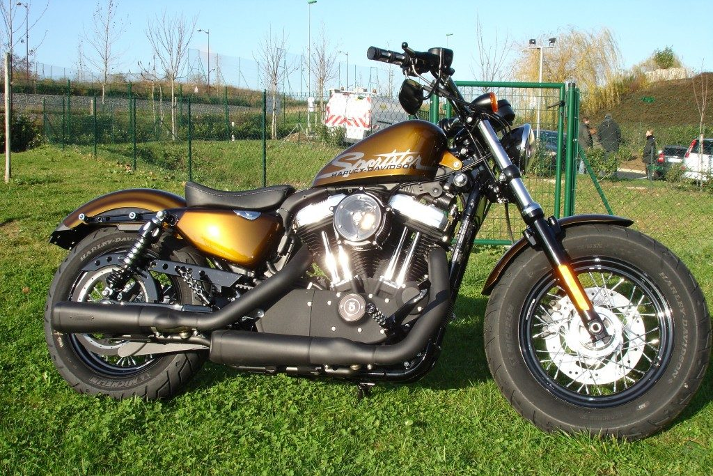 Harley Forty Eight Borie