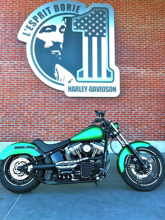 "Harley softail ""green"" Borie"