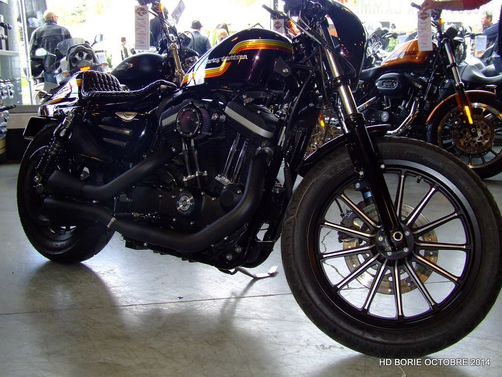 Harley Dyna AMF Metal Flakes